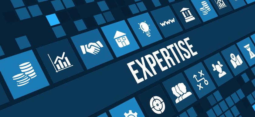 Esperienze, competenze e specializzazioni Netlife s.r.l. Comunicazione e formazione nell'era digitale e dei social